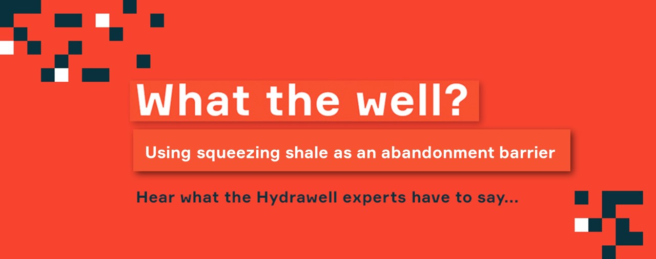 What the Well? #5 - Using squeezing shale as an abandonment barrier